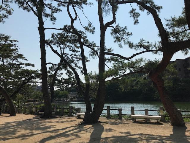 阪急御影 深田池公園